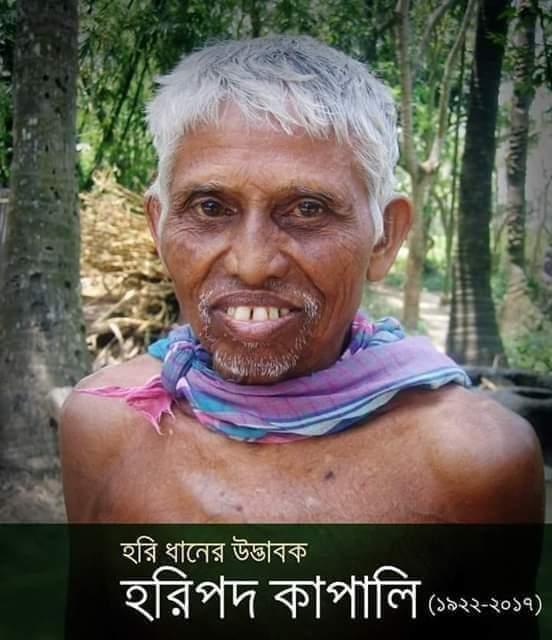 হরিপদ কাপালি
